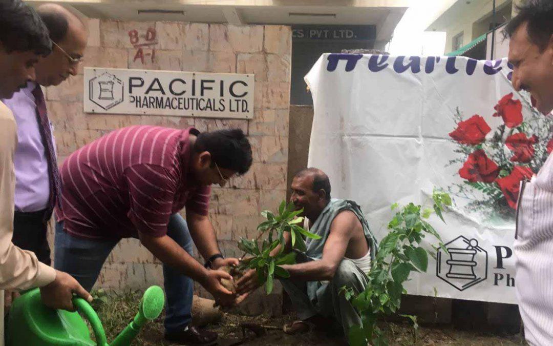 TREE PLANTATION CAMPAIGN 2018